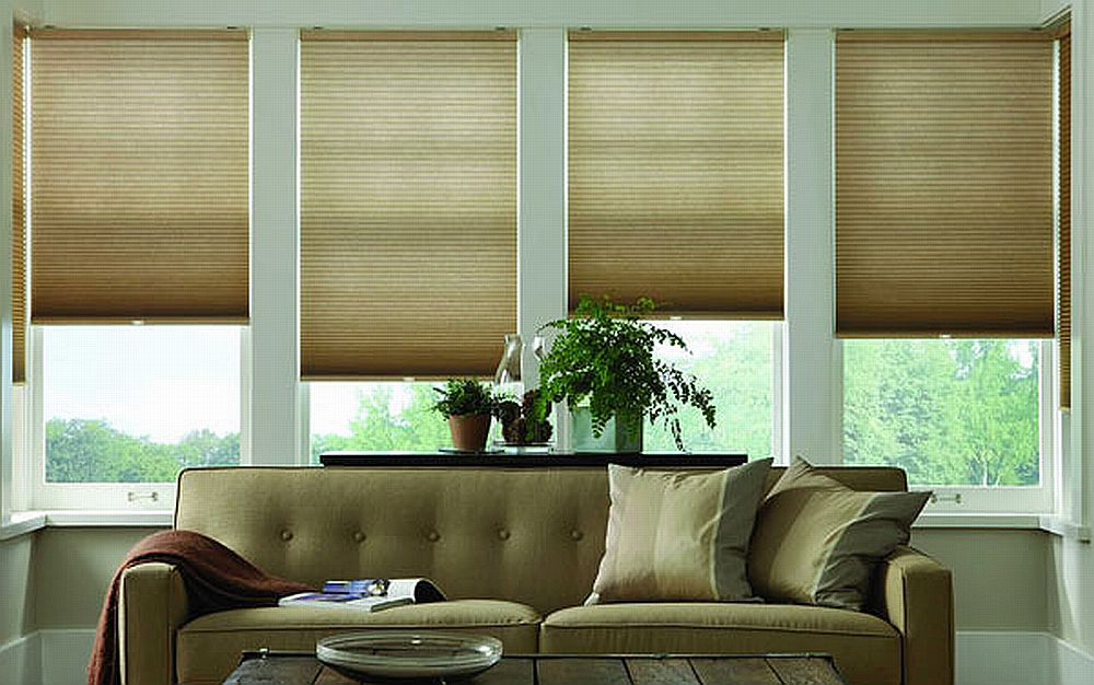 discount blinds can save energy